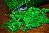 Doctor Parsley (Catching Magic) Tags: food nikon ugly tiraudan herb vege thegoodthebadandtheugly