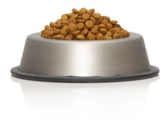 pet food testing