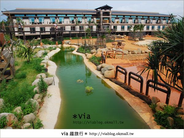 【新竹住宿】來去和動物住一晚~關西六福莊生態渡假旅館2