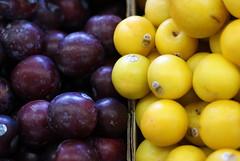 Pluots (drew*in*chicago) Tags: orange tree yellow fruit train lunch cherries purple michigan peach joe delicious produce pick sawyer rainer plums blueberries southshore pickin pluots drewinchicago