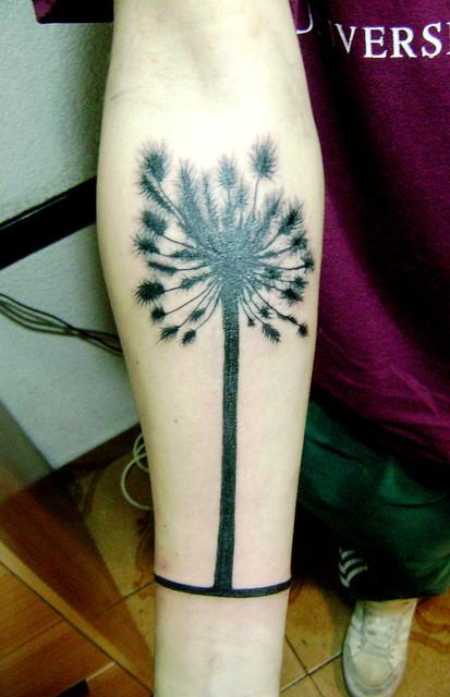 tatuajes de leo. tatuaje a Leo . Araucaria chilena la franja de abajo da la vuelta completa