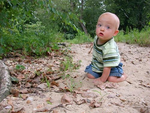 Aug 10, 2010 Elden