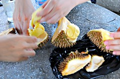 Cambodian durians