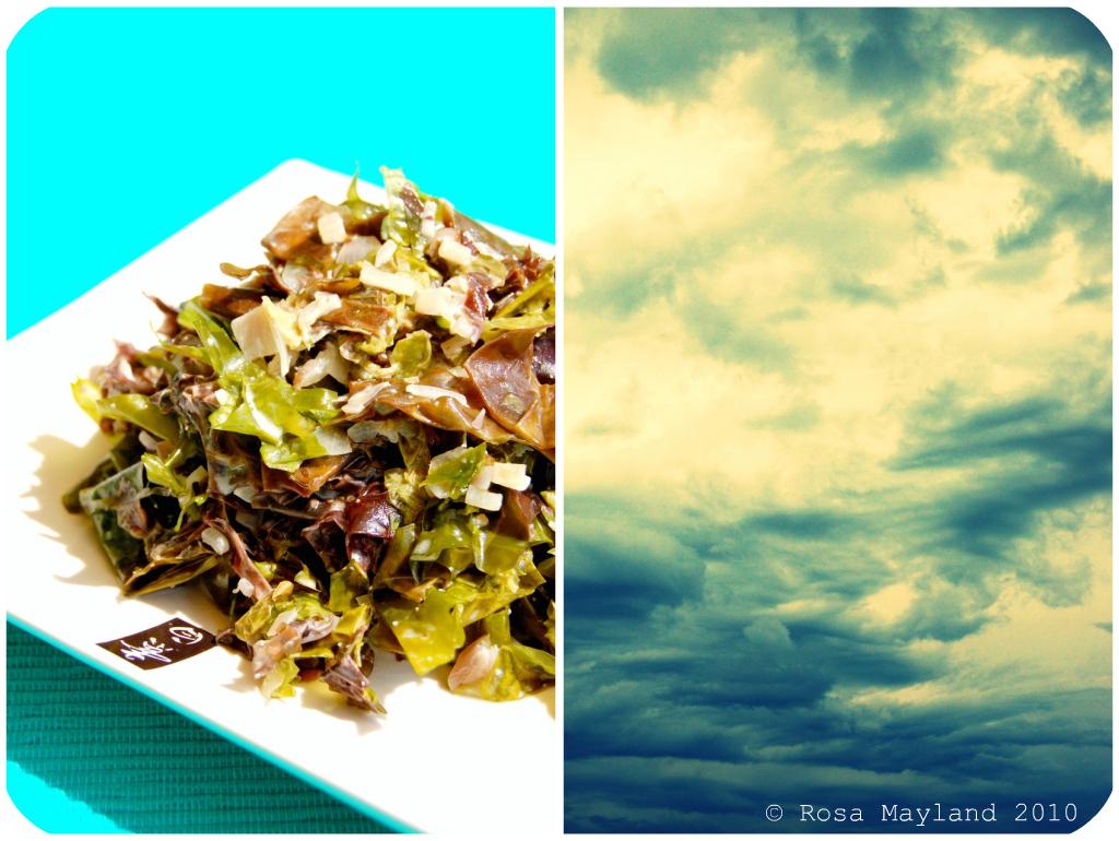 Seaweed Picnik collage 4 bis