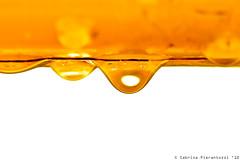 piove su i pini scagliosi ed irti... (Sabrina Pierantozzi) Tags: sun water rain drop thunderstorm pioggia piove