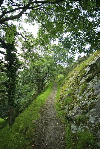 The Path Down From Castell y Bere