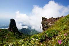 ローソク岩とお花畑