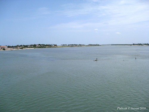 Pulicat Lake view from the bridge