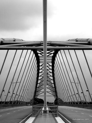 Putrajaya bridges5