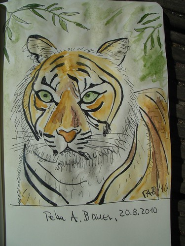 TigerColour[20100821]