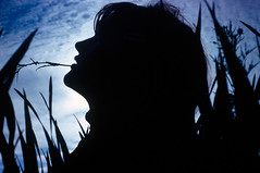 "Silhouette of girl in tall grass (IronRodArt - Royce Bair (""Star Shooter"")) Tags: girl grass silhouette photography tall kodachrome argusc3 royceswaybackphotos"