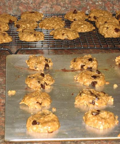 okara-oatmeal cookies