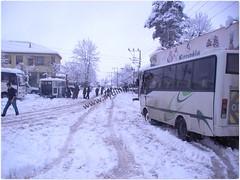 kismanzarasi014 (bakcay1) Tags: turkey koy kis merkezi dzce duzce manzaralari aydinpinar aydnpnar