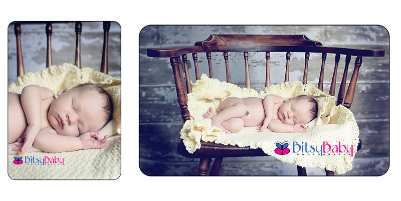 newborn photographer annapolis
