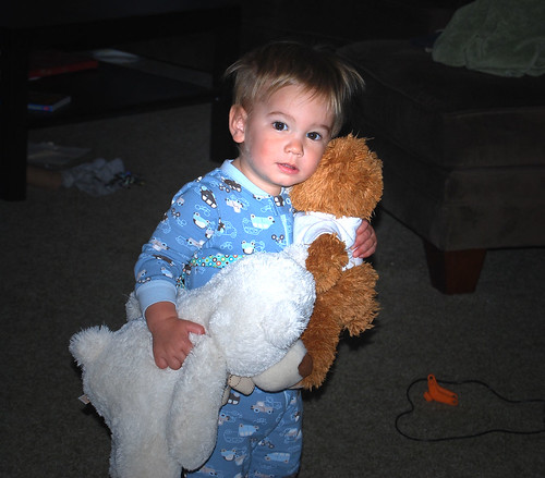 loves his bears