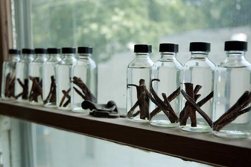 Distilling homemade vanilla