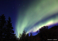 Northern Lights and the Big Dipper (Critter Seeker) Tags: travel trees sky usa color tree nature alaska night canon stars outdoors star eagle yukon aurora ursamajor constellation northernlights auroraborealis bigdipper colorphotoaward t2i eaglealaska