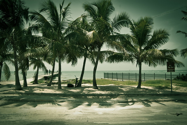"""...palm trees sway in a sultry breeze against the unmistakable aqua splendor of the Caribbean Sea..."""