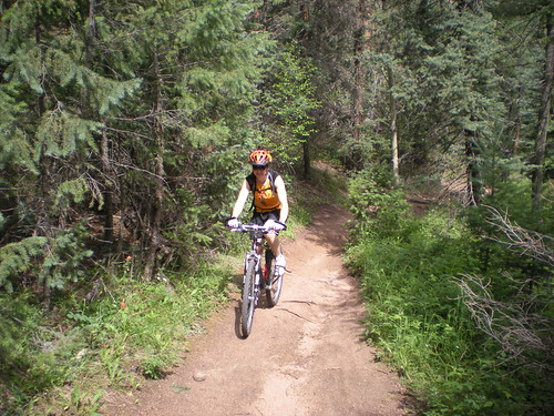 Clare Mountain Biking Colorado Trail