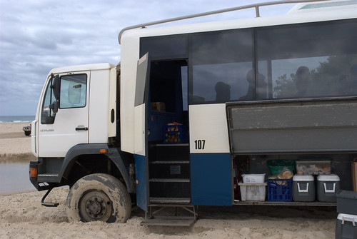 Fraser Island: Our transport