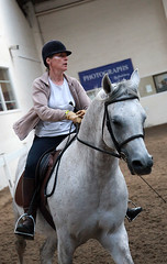 UKIAHS 2010 Arabian Grey Stallion Horse (pg tips2) Tags: show summer horses horse international arab ponies arabian aug 2010 equus arabs arabians equines towerlands arabhorse arabhorses towerlands2010internationalarabhorseshow ukiahs ukinternationalarabhorsesociety2010