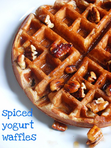 spiced yogurt waffles with taosted pecan maple syrup
