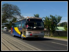 DALIN Gold Series (bentong IV) Tags: bus gold royal line daewoo series dalin tuguegarao cvl ilagan cauayan cruistar 2629747