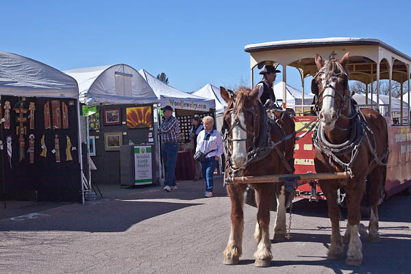 Clydesdales at Tubac Festival of the Arts