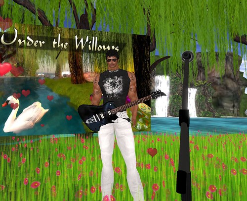Live Music with MichaelJames Magic at Under the Willows on February 13 2011
