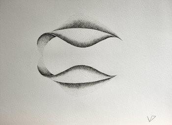 Encres au point sur papier aquarelle représentant une architecture végétale inspirée d'un pétale de dimension 30x40cm. Dans ce duo, les deux formes sont  parallèles et en contact au niveau des bases – Sandrine Vallée