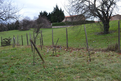 Lyon jardins potagers 29 (Pause jardin)