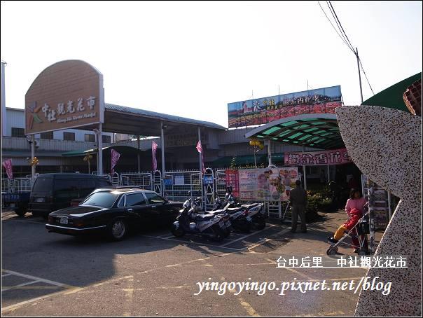 台中后里_中社光觀花市20110130_R0017658