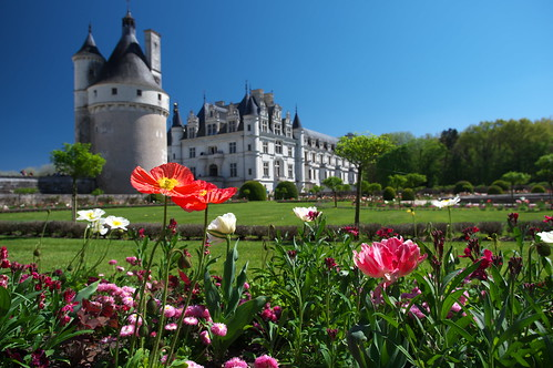 Chenonceau Flowers