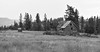 Old Forgotten Wooden Cabin (Carolyn H. - Travel & Nature Photographer) Tags: forested forest trees cabin bw blackandwhite landscape outdoors outdoor nikon d5500