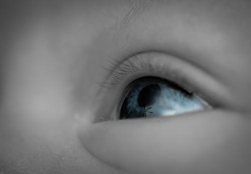 #27/365 Blue Eyes