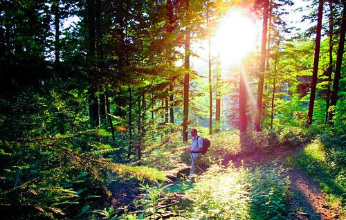 Abendstimmung Blauen-Trail