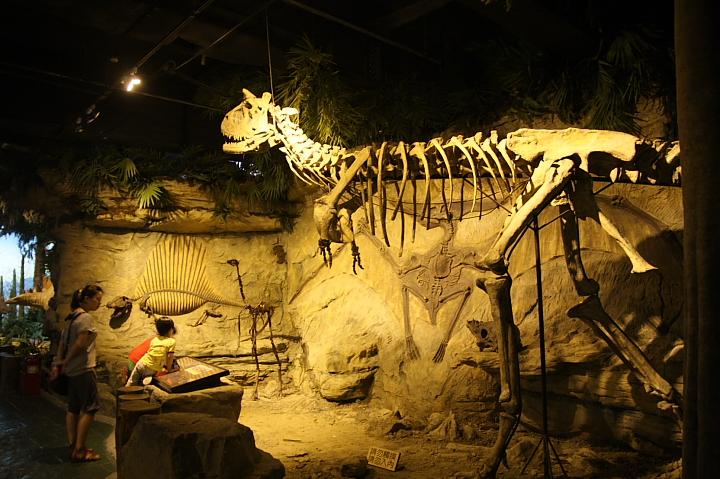 台北市立動物園台灣動物教育館0026