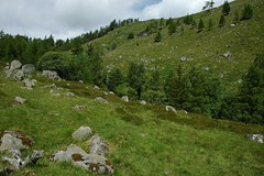 Bachnagairn Wood (Paul Sammonds) Tags: mountain river scotland doll glen cairn esk bannoch glenesk