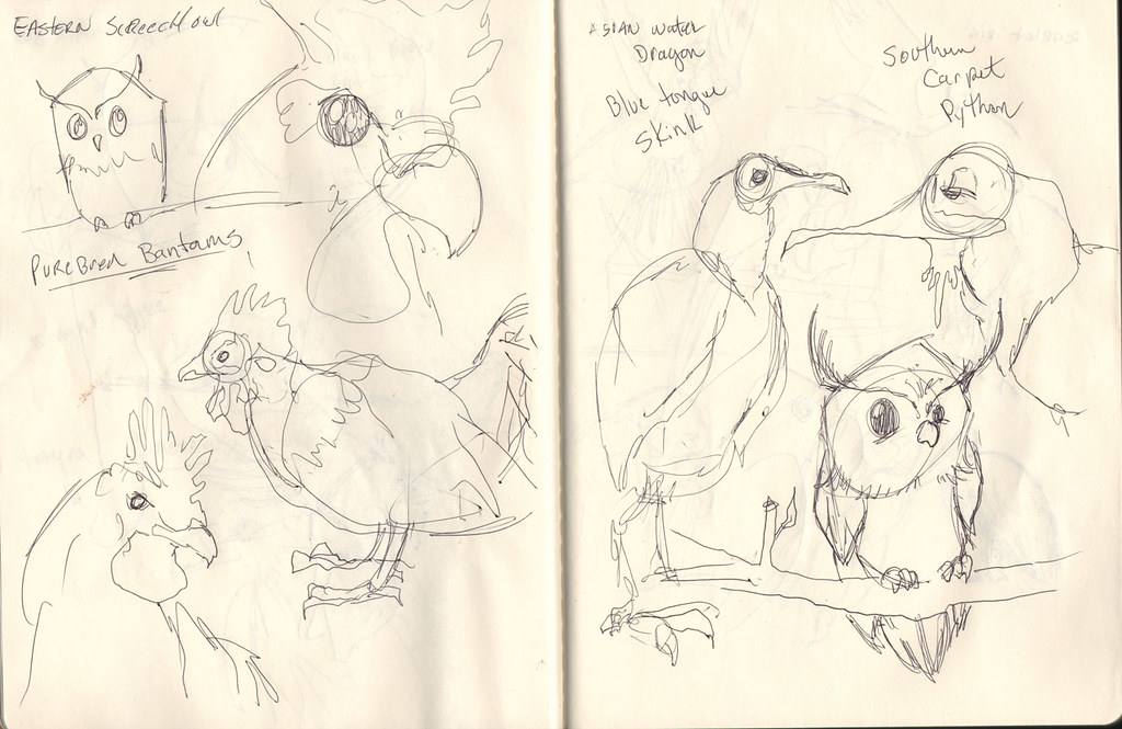 zoo-sketches004