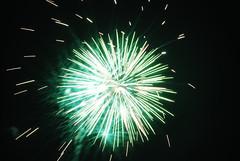 fireworks 2010 197 (gary camp) Tags: fireworks2010