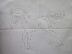Ali's horse