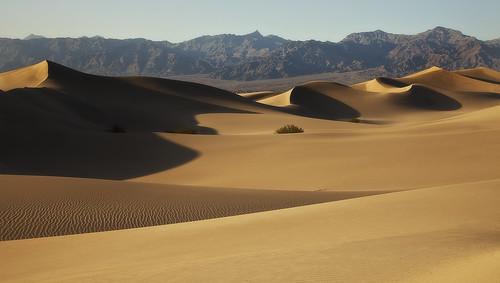 117 degrees (D Breezy - davidthompsonphotography.com) california light summer usa mountains hot canon shadows curves textures deathvalley 117 mesquitesanddunes stovepipewells deathvalleynationalpark inyocounty 24105f4l 24105mml 5dmarkii canon5dmarkii