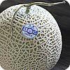 Musk Melon 100
