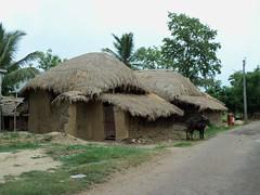 Village house at Tarapith (Shirshasin) Tags: easyshare kodal c142 shirshasin
