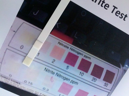 nitrate and nitrite test result