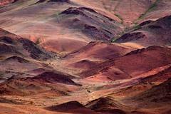 Vibrant Hills (Irena Portfolio) Tags: mongolia favoritepictures keepyoureyesopen thetruthgallery allbeautifulshotsandmanymore magicunicornverybest magicunicornmasterpiece trolledproud coppercloudsilvernsun 1pocodmusica treasuresofkeepyoureyesopen