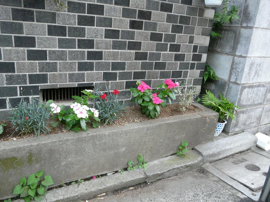 Concrete Curbside Planter