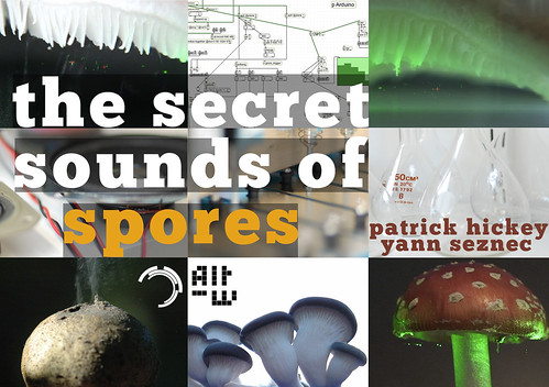 The Secret Sounds of Spores