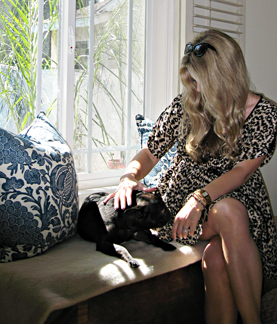 leopard print dress+Sea NY+french bulldog+palms+barclay butera pillows+master bedroom+sharp