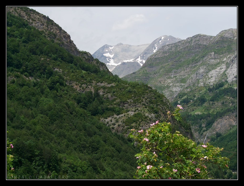 Vignemale desde la subida al Valle de Otal
